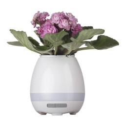 Detalhes do produto b2013- Caixa de Som Vaso